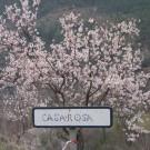 phoca_thumb_l_casa-rosa
