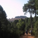 phoca_thumb_l_cerca-del-gallinero