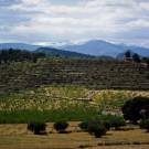 ELCHE-VISTA-CALAR-DE-LA-SIMA-DESDE-CORTIJO-HOYA-NEVADA