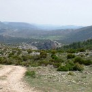 ruta-11-del-cortijo-nuevo-al-cortijo-del-zapatero-4