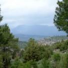 ruta-16-por-el-cortijo-del-tamaral-3