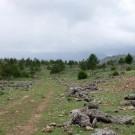 ruta-16-por-el-cortijo-del-tamaral-4