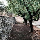 ruta-de-las-pozas_06