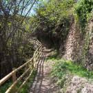 LETUR-BAJADA-CHARCO-PATACO