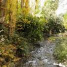 ruta-del-zarzalar-4